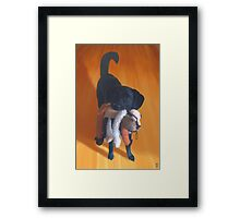 Nemo the Dog Framed Print