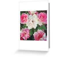 Flower Photography Greeting Card