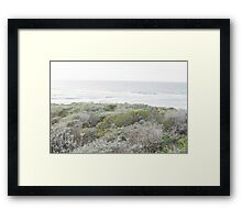 Brush on a Beautiful Day by the Oceanside Framed Print