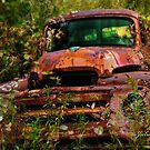 Put Out To Pasture by jules572