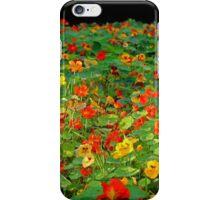 Bed of Nasturtiums. iPhone Case/Skin