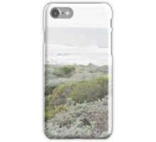 Brush on a Beautiful Day by the Oceanside iPhone Case/Skin
