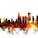 Chicago Illinois Skyline by Michael Tompsett
