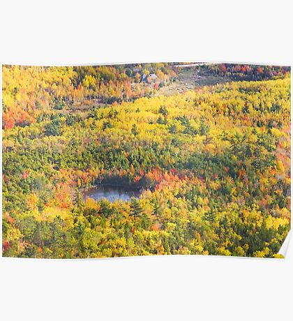 Fall Landscape With Pond  Acadia National Park Poster