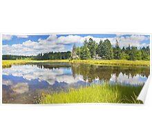 Bass Harbor Marsh In Summer Acadia National Park Maine Poster