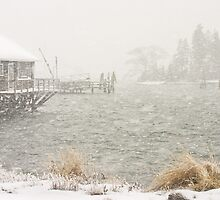 Heavy Snowstorm in Bass Harbor, Mount Desert island, Maine by KWJphotoart