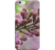 Lilac buds - 2011 iPhone Case/Skin