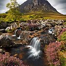 Buachaille Etive Mor and Heather. Glencoe. Highlands of Scotland. by PhotosEcosse
