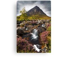 Buachaille Etive Mor and Heather. Glencoe. Highlands of Scotland. Canvas Print