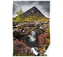 Buachaille Etive Mor and Heather. Glencoe. Highlands of Scotland. Poster