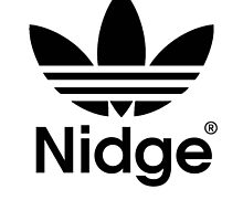 Nidge Love/Hate by eimeoreilly
