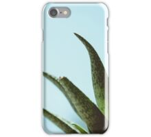 Simplistic Green and Blue Succulent Photograph iPhone Case/Skin