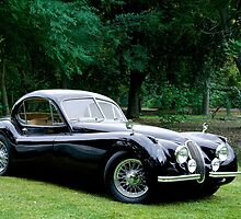 1953 Jaguar XK120 Coupe by DaveKoontz