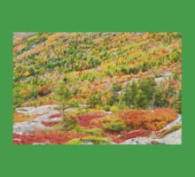 Fall coloor on Cadillac Mountain, Acadia National Park, Maine Kids Clothes