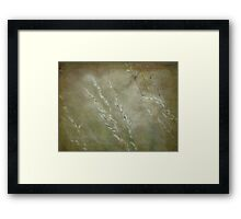 Wild Grasses 30 Framed Print