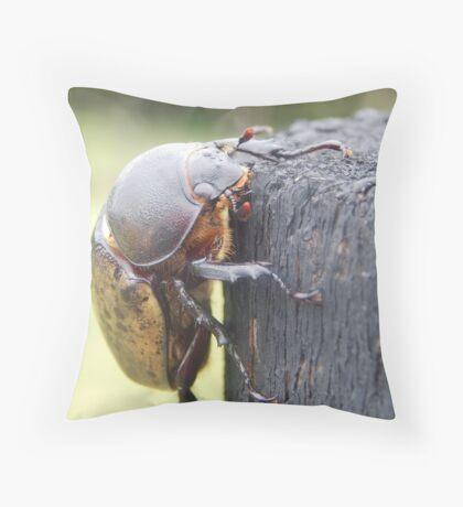 Hercules Beetle High Res Throw Pillow