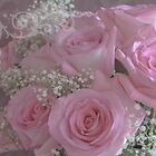 Tissue Soft Roses by Sandra Foster