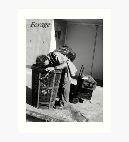 Forage Art Print