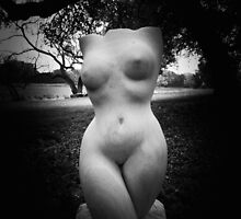 Black and White Curves by TnKArts