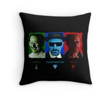 The Rise and Fall of Walter White Throw Pillow