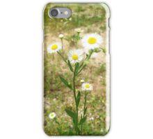 Tiny Daisies iPhone Case/Skin