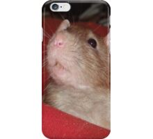 Did someone say something? iPhone Case/Skin