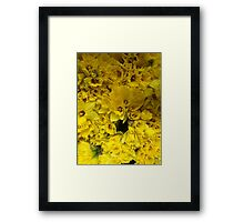 New York Stroll (Yellow Flowers) Framed Print