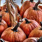 Les Citrouilles....pumpkins!!! by Poete100