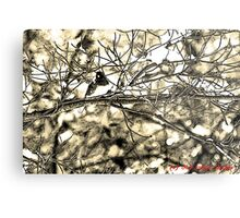 Dark-eyed Junco Sumi-e Metal Print