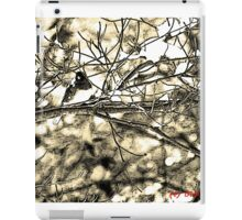 Dark-eyed Junco Sumi-e iPad Case/Skin