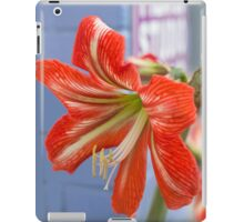 Tania's Happy Hippy plants - Hippeastrum iPad Case/Skin