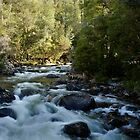 Arm River Cascades by Karine Radcliffe
