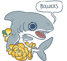 Bollocks by Cara McGee
