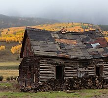 Mountain Cabin by Gary Gray