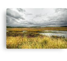 Autumn Salt Marsh - Bombay Hook National Wildlife Refuge - Delaware - USA Canvas Print