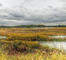 Autumn Salt Marsh - Bombay Hook National Wildlife Refuge - Delaware - USA Sticker