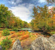 Autumn At The Creek - Green Lane - Pennsylvania - USA by MotherNature