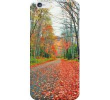 AUTUMN ON BIG COVE ROAD* iPhone Case/Skin