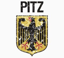 Pitz Surname German by surnames