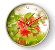 Rhododendron plant blooming red Clock