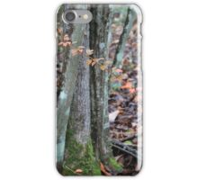 Woodland Color Palette iPhone Case/Skin