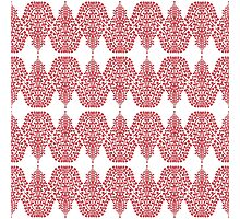 SPIRIT LINEAR white red Photographic Print