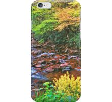 SPRING,W.PRONG LITTLE PIGEON RIVER iPhone Case/Skin
