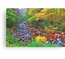 SPRING,W.PRONG LITTLE PIGEON RIVER Canvas Print