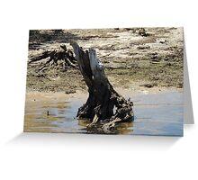 Log in water Greeting Card