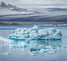 Chasing Ice by Evelina Kremsdorf