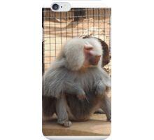 Zoo animal  iPhone Case/Skin