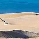 Living Dunes by Alex Fricke