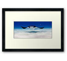 Head On with a Manta Ray Framed Print