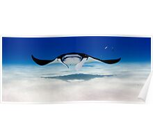 Head On with a Manta Ray Poster